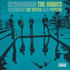 The Sonics - Introducing The