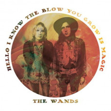 "The Wands - Hello I Know The Blow You Grow Is Magic (10"")"