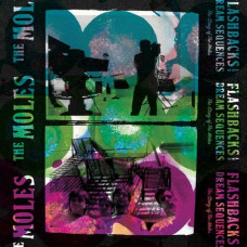The Moles - Flashbacks & Dream Sequences (Ltd 2xLP+2xCD RSD 2014)