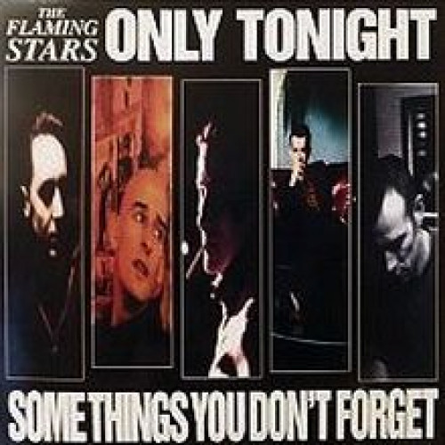 """The Flaming Stars - Some Things You Don't Forget / Only Tonight  (7"""")"""