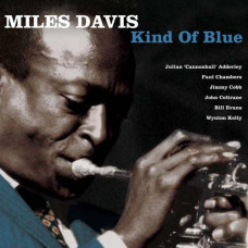 Miles Davis - The Kind of Blue (Special collectors edition 180g)
