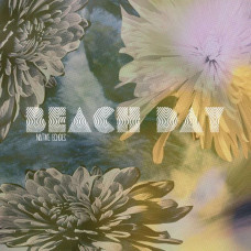 Beach Day ‎ - Native Echoes (Ltd Col.)