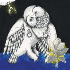 Songs: Ohia - The Magnolia Electric Co (10th Anniversary Deluxe Edition)