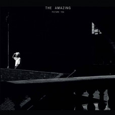 The Amazing - Picture You (2xLP)
