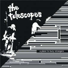 "A Place To Bury Strangers/The Telescopes-Down The Stairs/I Wanna Be Your Dog (Ltd Col. 10"")"
