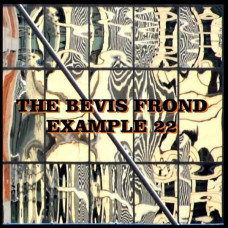 The Bevis Frond - Example 22 (2xLP)