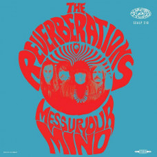 The Reverberations - Mess Up Your Mind