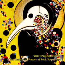 The Prophet Hens - The Wonderful Shapes Of Back Door Keys (Ltd)