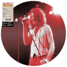 Ian Gillan - Access All Areas (Ltd Picture Disc)